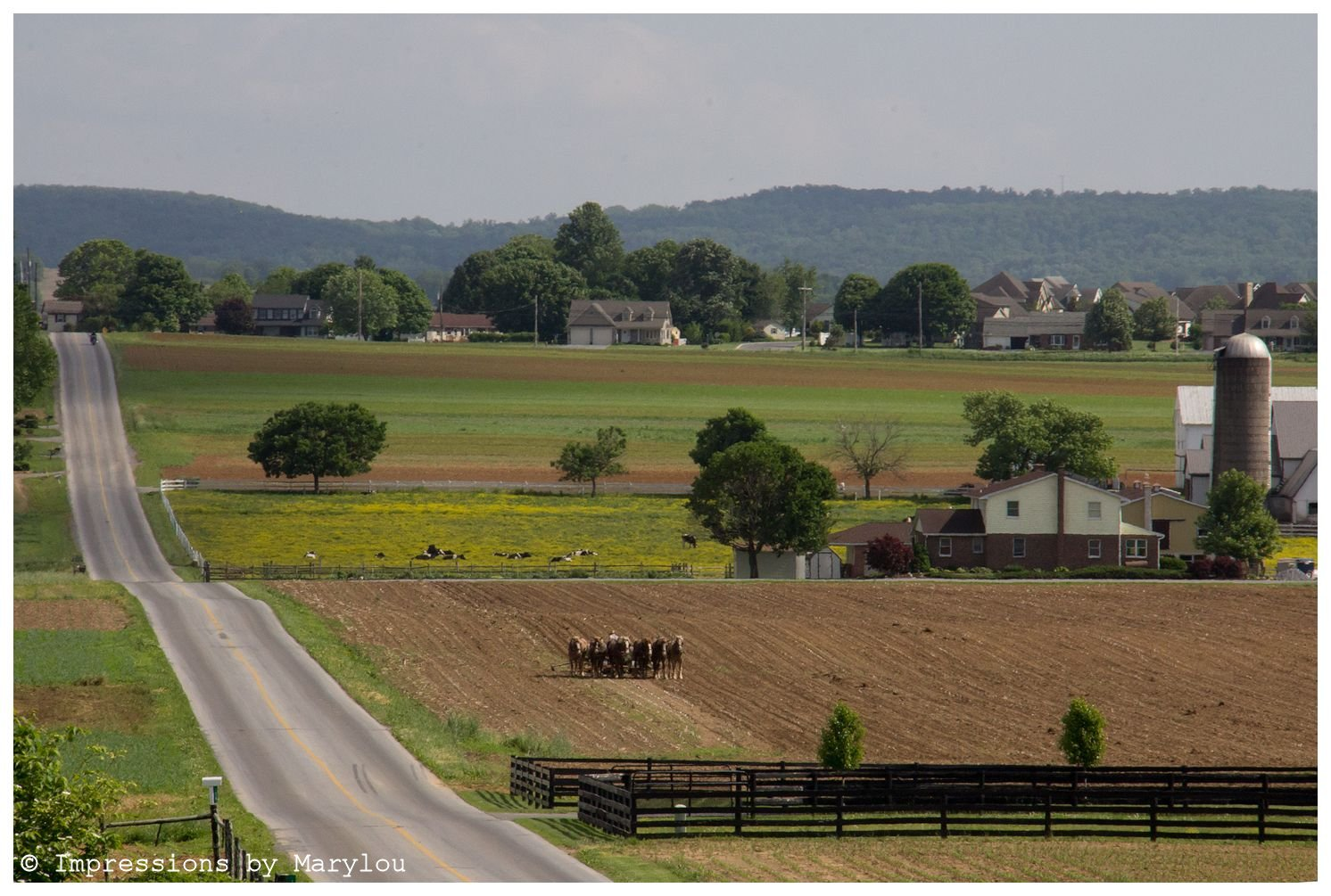 Lancaster County-31